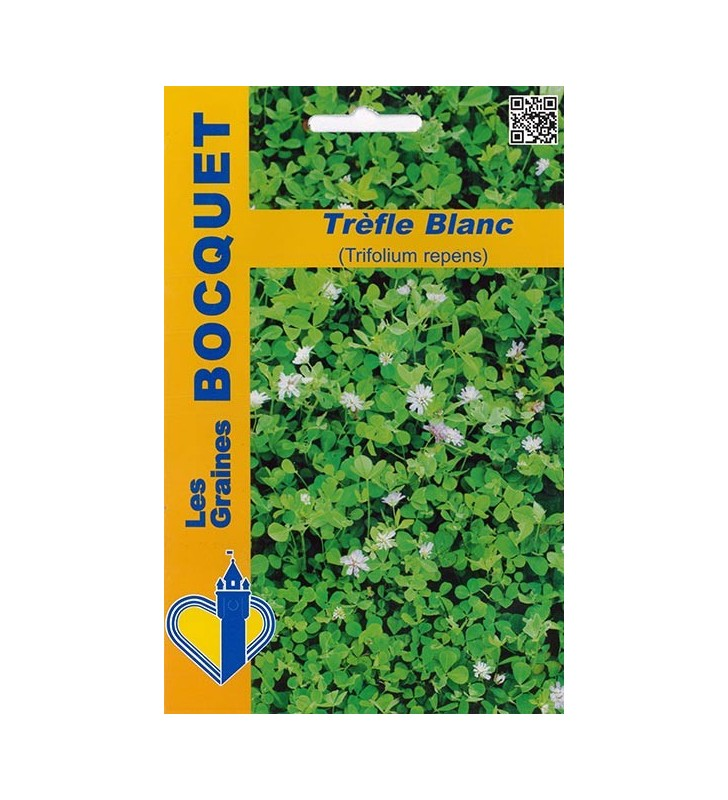 Trèfle blanc (Trifolium repens) pour 40m²