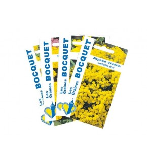 Lot de Fleurs Jaunes (4 sachets de graines à semer)
