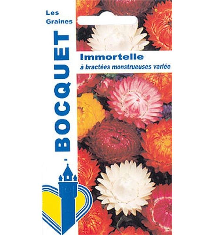 Immortelle A Bractees Monstrueuses Variee Graines Bocquet
