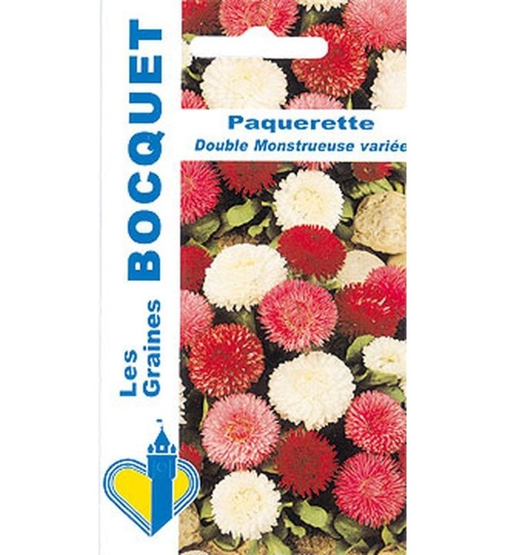Paquerette A Fleur Double Variee Graines Bocquet