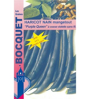 Haricot nain Purple Queen 80g (cosses violettes)