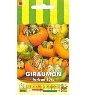 Potiron Giraumon turban