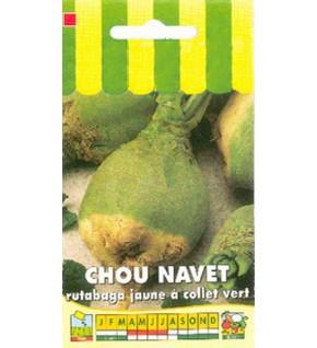 Chou rutabaga jaune à collet vert