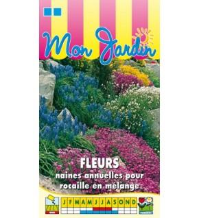 Fleurs annuelles naines pour rocaille en mélange
