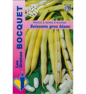 Haricot à rames Soissons gros blanc - 100g