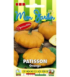 Courge Pâtisson orange