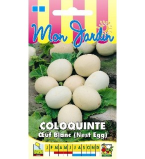 Coloquinte Oeuf Blanc (Nest Egg)