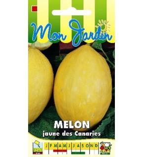 Melon Jaune des Canaries