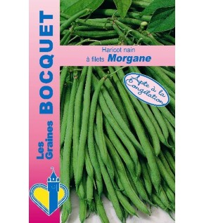 Haricot nain à filet Morgane 60g