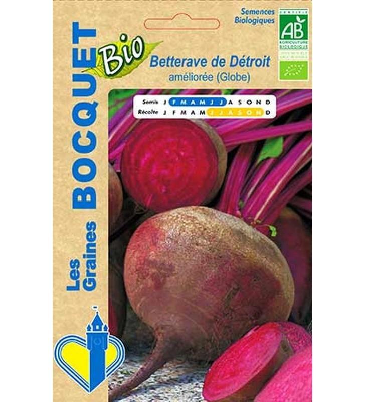 Betterave Globe de Détroit certifiée ECOCERT FR-BIO-01
