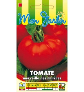 Tomate Merveille des marchés