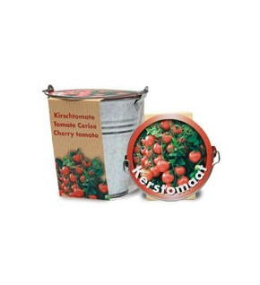 Tomate cerise + pot zinc