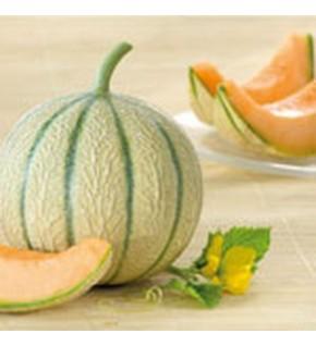 Melon hyb F1 Arisona sachet blanc 0.2 g