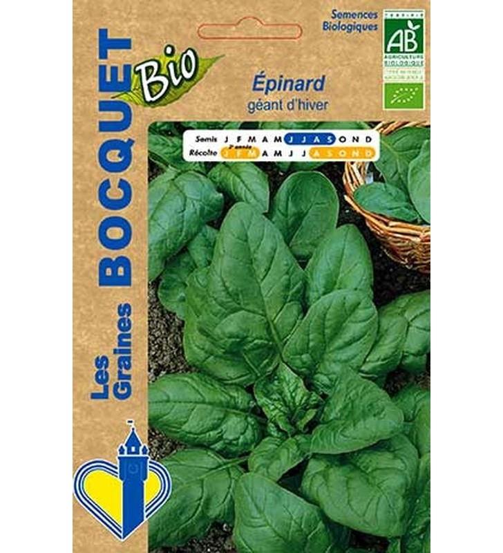 Epinard géant d'hiver certifié ECOCERT FR-BIO-01
