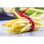 Graines de haricots jaunes à semer | Graines Bocquet