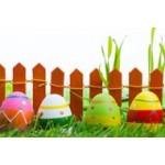 La chasse aux graines de Pâques est ouverte | Graines Bocquet