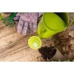 Fleurs et légumes à semer au Printemps | Graines Bocquet