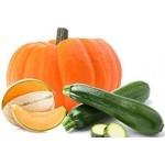 Graines de courges, potirons, melons à semer | Graines Bocquet