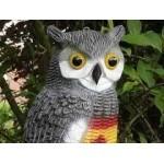 Solutions anti oiseaux et anti pigeons   Graines Bocquet
