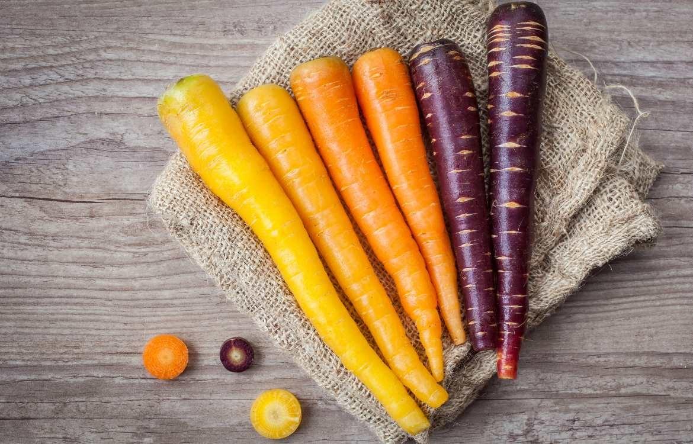 d87e2a23e72 Quand la Voix du Nord s intéresse à nos légumes anciens